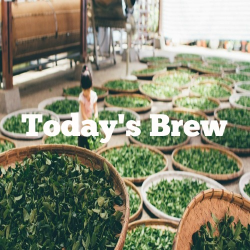 New playlist: Today's Brew