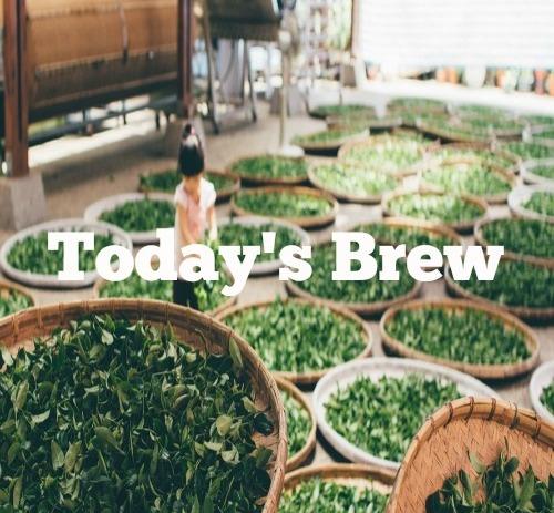 New playlist: Today's Brew