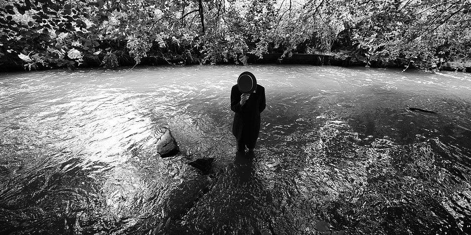 Album Of The Week: John Ellis - Evolution: Seeds & Streams