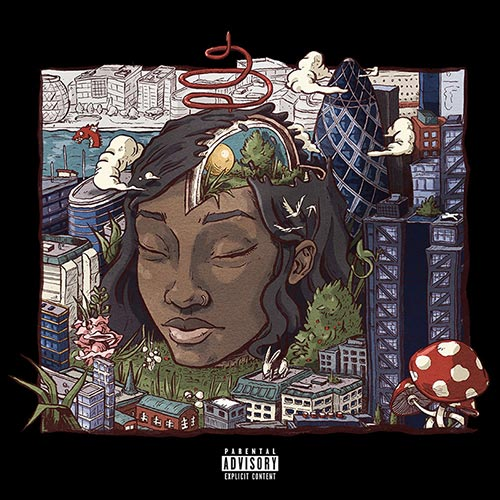 Album: Little Simz - Stillness in Wonderland