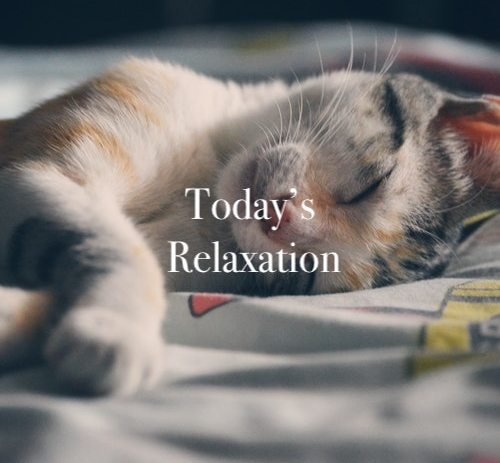 Today's Relaxation