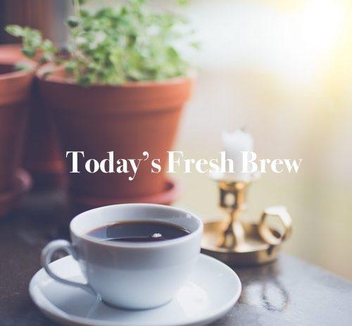 Today's Fresh Brew