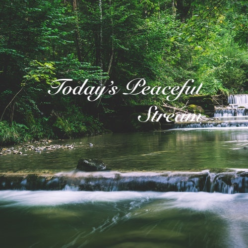Playlist: Today's Peaceful Stream