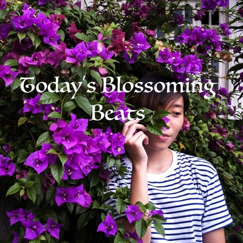 Today's Blossoming Beats